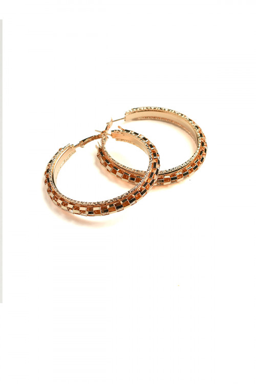 A2-3-2-ANE4085G HOOP EARRINGS/12PCS