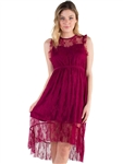 Women's Eyeshadow Sheer Lace Dress with Lining