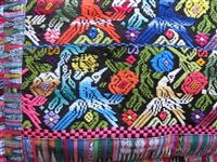Embroidered Motmot Pillow Sham - El Salvador