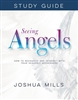 Seeing Angels Study Guide: How To Recognize and Interact With Your Heavenly Messengers - Joshua Mills (Study Guide)