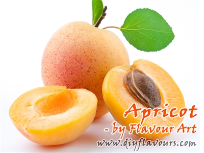 Apricot Flavor Concentrate by Flavour Art
