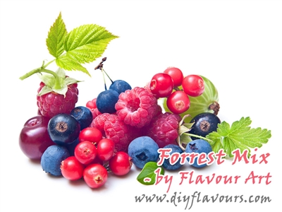 Forrest Mix Flavor Concentrate by Flavour Art