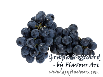 Grape Concord Flavor Concentrate by Flavour Art
