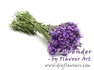 Lavender Flavor Concentrate by Flavour Art