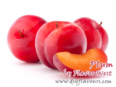 Plum Flavor Concentrate by Flavor West