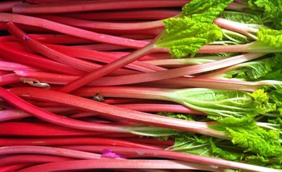 Rhubarb by Great Lakes Flavours