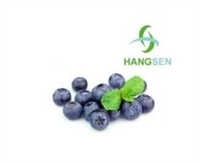 Blueberry Flavor Concentrate by Hangsen