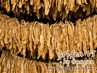 Golden VI Tobacco by Hangsen