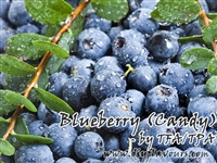 Blueberry (Candy) by TFA or TPA