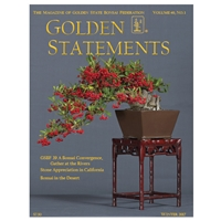Golden Statements Winter 2017 - Single Issue - FREE DIGITAL DOWNLOAD