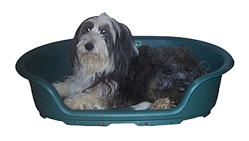 heated pet ped - Heated Dog Bed