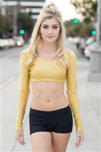 Long Sleeve Crop Top (Velvet)