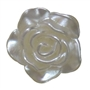 20mm White Pearl Rose