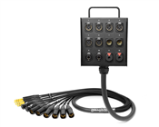 12-Channel Studio Wall Box / Stage Box | Made from Mogami 2933 & Neutrik Gold Connectors | Premium Finish