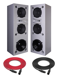 Augspurger Tower 215.18 SXE3/3500 | 3-way Active DSP Monitors | Pair