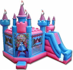 5 in 1 Princess PlayCenter