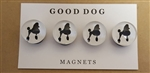 Domed Glass Poodle Magnet Set