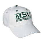 Michigan State Bar Hat