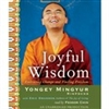 Joyful Wisdom, by Yongey Mingyur Rinpoche, CD