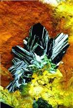 Olivenite from Nevada POSTCARD
