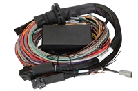 ECU - Haltech Elite 1500 Premium Universal Wire-in Harness (DSM/Evo)