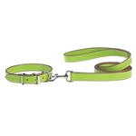 Casual Canine Leather Leash Green 6 Feet long 1 inch wide