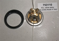 Hotsy Pressure Washer Pump Check Valve Repair Kit 8.717-591.0, replaces Hotsy 753110 and 70-260013