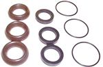 8.720-594.0 Annovi Reverberi High Pressure Pump Seal Kit 1857