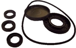 8.720-667.0 Annovi Reverberi Pump Oil Seal Repair Kit 2786