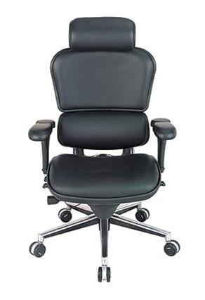 Pleasant Raynor Ergohuman Leather High Back Executive Chair With Headrest Sms 14 Le9Erg Ibusinesslaw Wood Chair Design Ideas Ibusinesslaworg