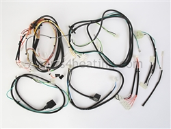 Raypak 012836F Wire Harness Kit - (Includes Complete Set of Boiler Harnesses)