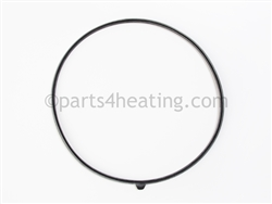 Raypak 013162F Door Seal Gaskets