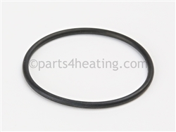 Raypak 015463F O Ring Bypass Cap
