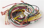 Pentair 42001-0104S Wire Harness Dual Volt
