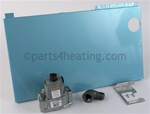 Pentair 460762 Kit Gas Valve TSI