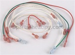 Pentair 471202 Wiring Kit 100MX DSI