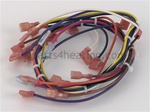 Pentair 473423 Harness Wiring Main