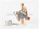 Pentair 474327 Thermostatic Expansion Valve