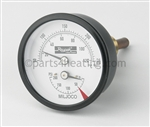 RAYPAK 600672 Temperature & Pressure Gauge-Kit
