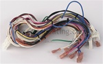 Hayward IDXLWHM1930 Wire Harness Main