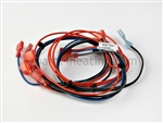 Teledyne Laars R0457900 Safety Circuit Wire Harness