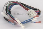 Lochinvar WRE2491 Ignition Module Wiring Harness