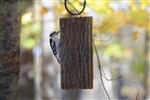 Suet-Sandwich Feeder