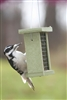 Recycled Suet Feeder