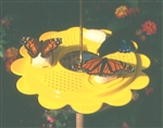 12 oz. Butterfly Feeder