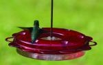 12 oz. Hummerfest Hummingbird Feeder by Birds Choice