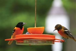 12 oz. Oriole Feeder