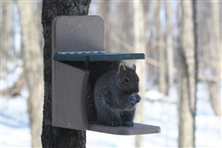 Recycled Squirrel Feeder