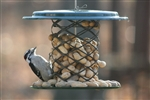Magnet Mesh Whole Peanut-in-the-Shell Feeder