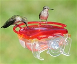 Gem Hummingbird Window Feeder